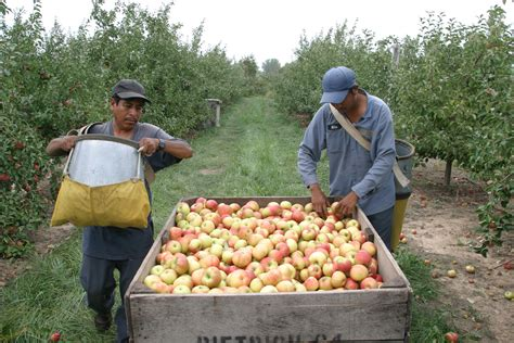 Immigration reform progress promising for Michigan agriculture