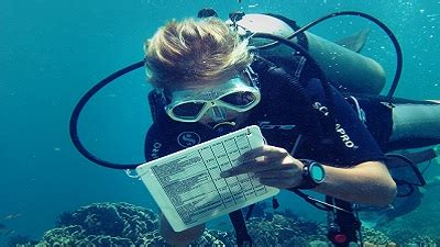 Marine Biology Work Experience - Research Practical Placement