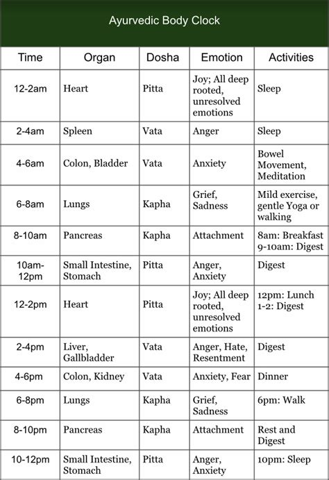 The Ayurvedic Body Clock: Organs and Dosha Alignment with