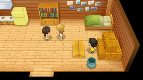 Zack's House (Story of Seasons: Friends of Mineral Town